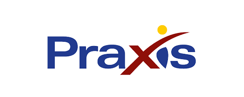 Praxis business intelligence and open-source solutions